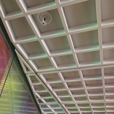 9Wood 6100 Modular Cube at NYU Tisch Hall, New York, New York. Perkins Eastman.