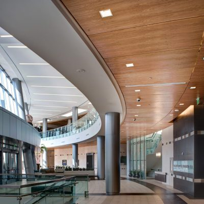 9Wood 3200 Acoustic Tile at Baylor Sammons Cancer Center, Dallas, Texas. Perkins + Will. Photo: Mark Menjivar.