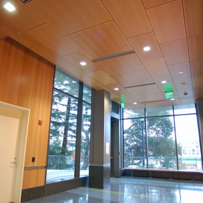 9Wood 5200 Staggered Perf Tile, Douglas Fir Veneer with Clear Finish and Solid Douglas Fir with Clear Finish, at UC Berkeley Li Ka Shing Center, Berkeley, California. ZGF Architects.