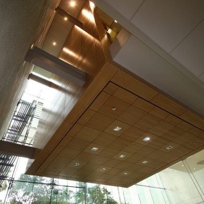 9Wood 3100 Acoustic Plank and 5100 Parallel Perf Tile at ESRI, Redlands, California. Hvidt Molgard Architects, Armantrout Architects.