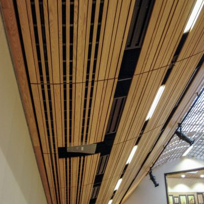9Wood 8200 Linear Wood Wave at St. Thomas Elementary, Medina, Washington.  Bassetti Architects.
