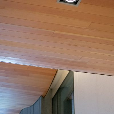 9Wood 8200 Linear Wood Wave at the Triangle Building, Denver, Colorado. AndersonMasonDale Architects.