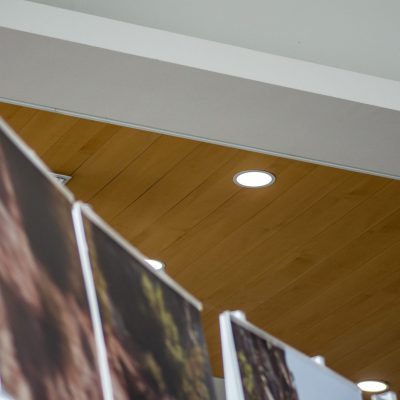 9Wood 2600 Flush Joint Linear at the Lithia Toyota of Springfield, Oregon. Ronald Grimes Architects.