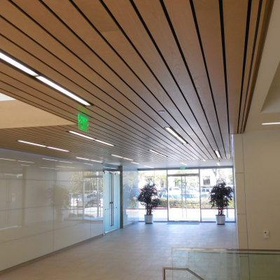9Wood 2300 Continuous Linear at California Institute for Biomedical Research, La Jolla, California. Gensler Architects.