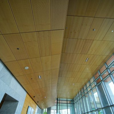 The 9Wood 4600 True Access Tile could be applied to an installation similar to this installation photo. Each panel would be fully accessible without tools and without jeopardizing the clean alignment across the entire ceiling.